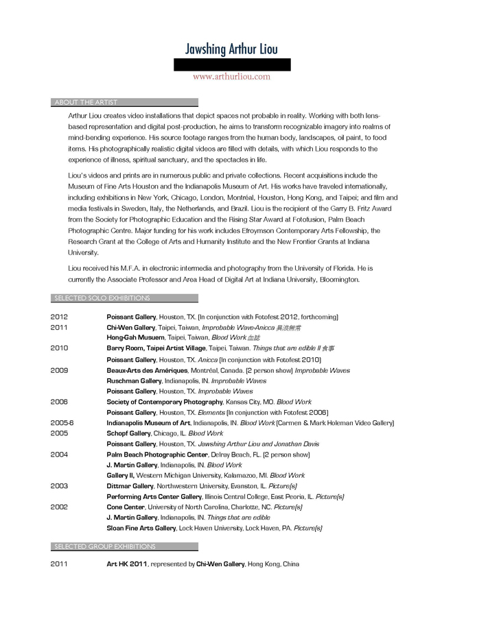Artist Resume 2011