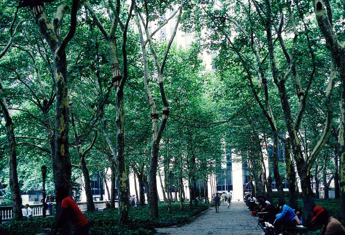 Nine Bridges In The Bryant Park