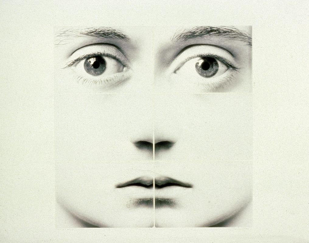 Six Part Face Series (Susan)